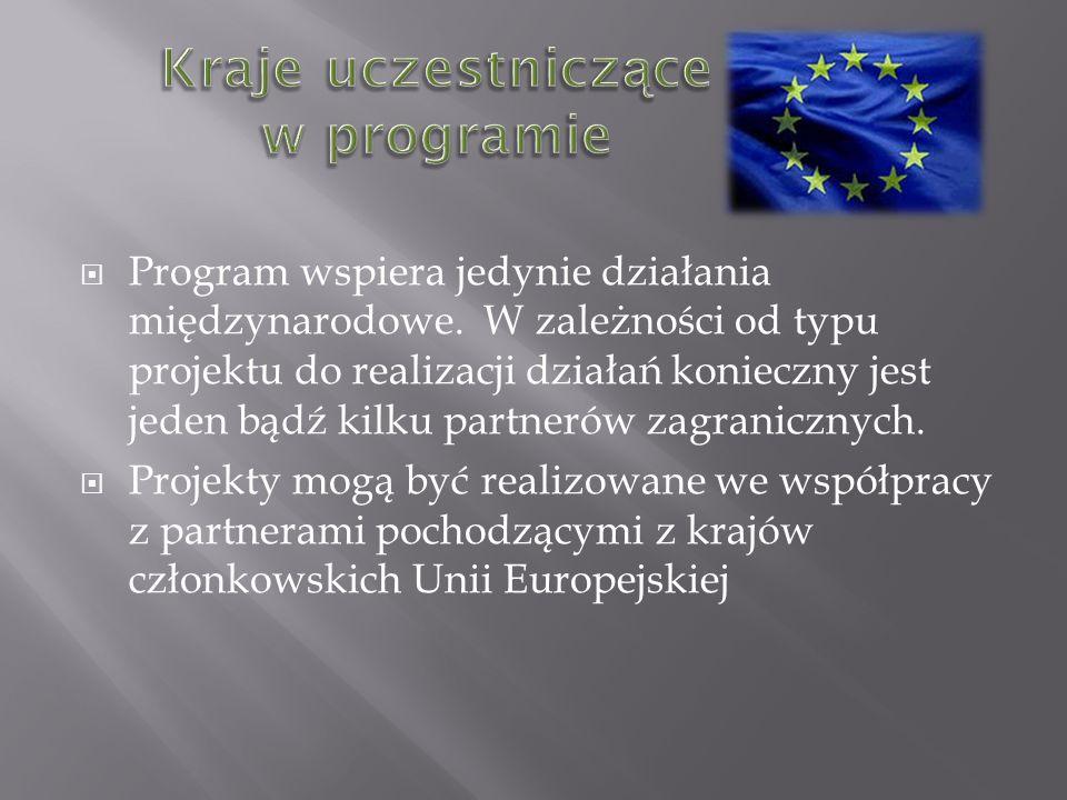 Program wspiera jedynie działania międzynarodowe.