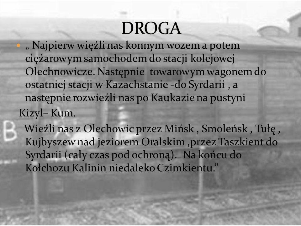 Najpierw więźli nas konnym wozem a potem ciężarowym samochodem do stacji kolejowej Olechnowicze. Następnie towarowym wagonem do ostatniej stacji w Kaz