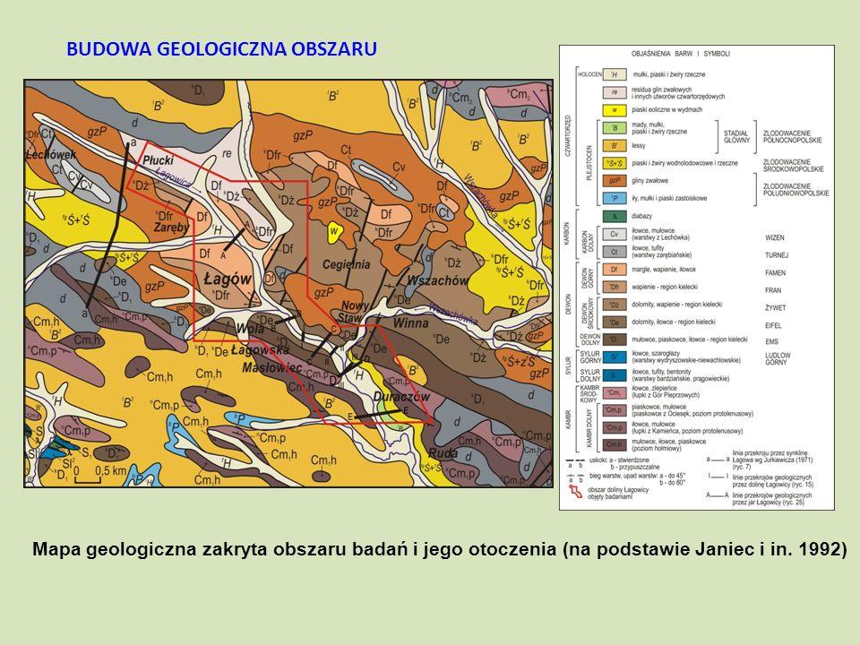 Mapa geologiczna zakryta obszaru badań i jego otoczenia (na podstawie Janiec i in. 1992) BUDOWA GEOLOGICZNA OBSZARU