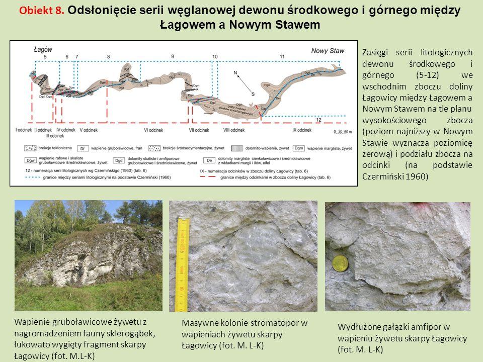 Zasięgi serii litologicznych dewonu środkowego i górnego (5-12) we wschodnim zboczu doliny Łagowicy między Łagowem a Nowym Stawem na tle planu wysokoś