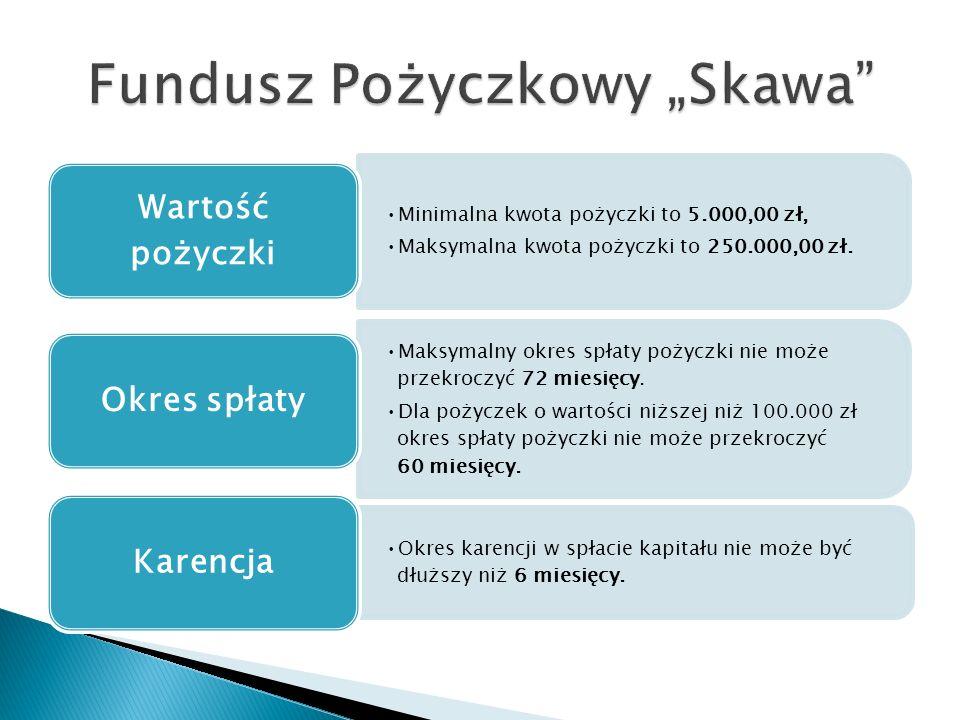 Minimalna kwota pożyczki to 5.000,00 zł, Maksymalna kwota pożyczki to 250.000,00 zł.