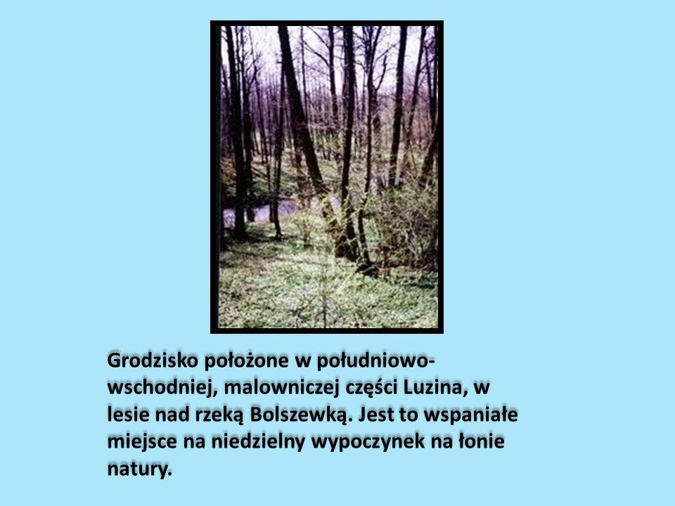 Grodzisko położone w południowo- wschodniej, malowniczej części Luzina, w lesie nad rzeką Bolszewką. Jest to wspaniałe miejsce na niedzielny wypoczyne