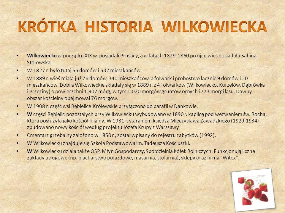 Wilkowiecko w początku XIX w. posiadali Prusacy, a w latach 1829-1860 po ojcu wieś posiadała Sabina Stojowska. W 1827 r. było tutaj 55 domów i 532 mie