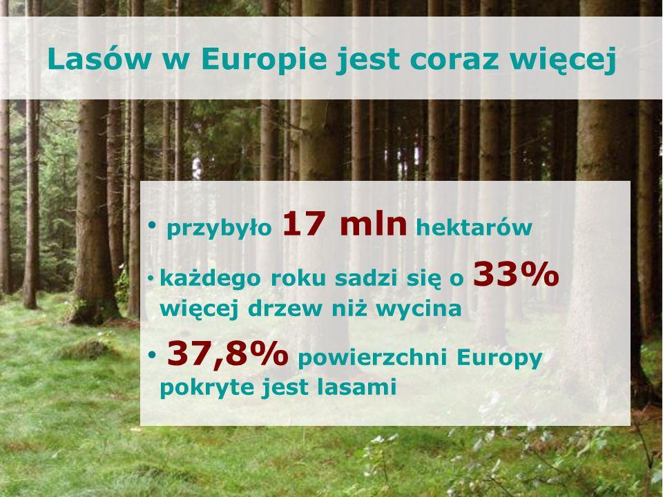 Lasów w Europie jest coraz więcej przybyło 17 mln hektarów każdego roku sadzi się o 33% więcej drzew niż wycina 37,8% powierzchni Europy pokryte jest