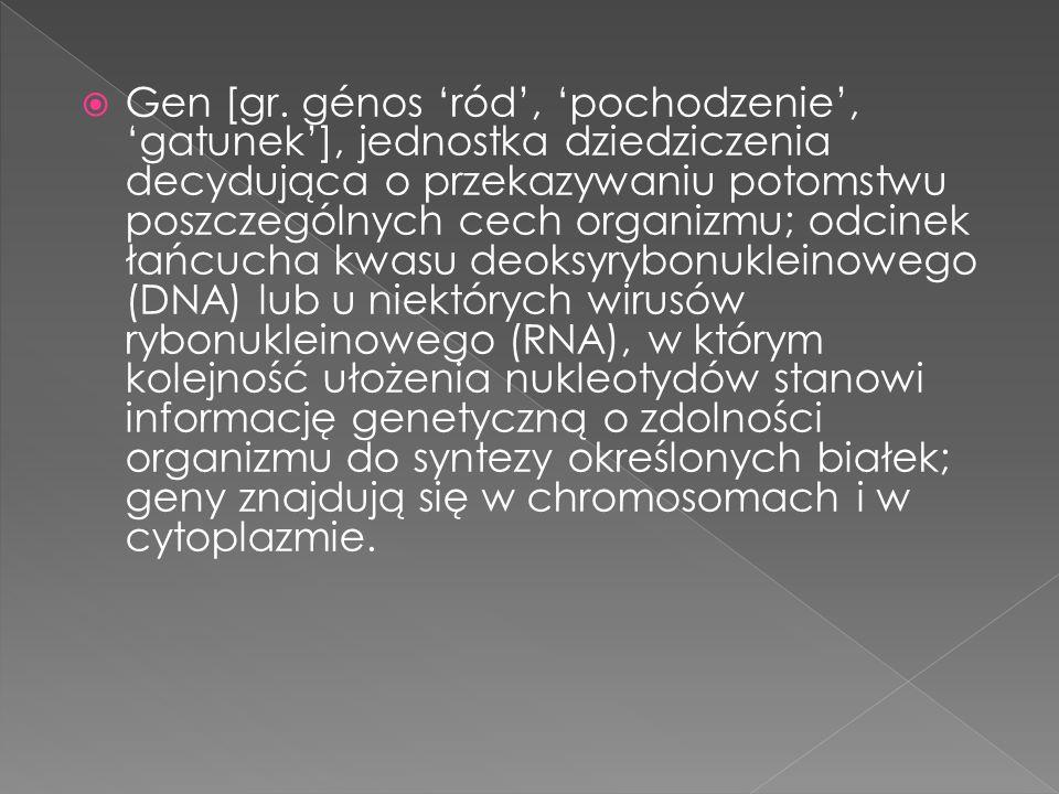 Encyklopedia – kompendium ludzkiej wiedzy zapisane w formie zbioru artykułów hasłowych, złożonych z haseł (słów kluczowych) i tekstów je objaśniających (zawierających informacje dotyczące tych haseł).