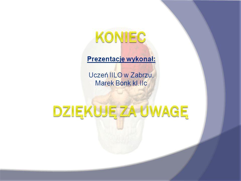 Prezentację wykonał: Uczeń IILO w Zabrzu, Marek Bonk kl.IIc