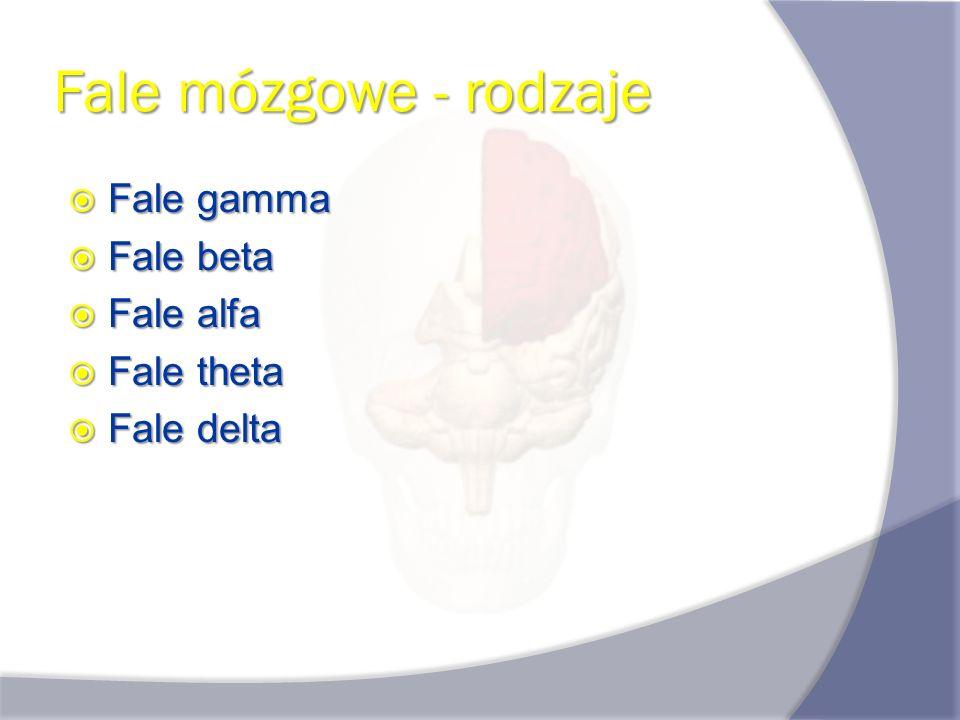 Fale mózgowe - rodzaje Fale gamma Fale gamma Fale beta Fale beta Fale alfa Fale alfa Fale theta Fale theta Fale delta Fale delta
