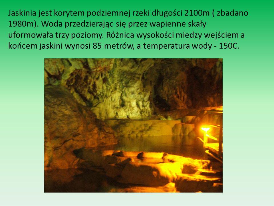 Jaskinia jest korytem podziemnej rzeki długości 2100m ( zbadano 1980m). Woda przedzierając się przez wapienne skały uformowała trzy poziomy. Różnica w