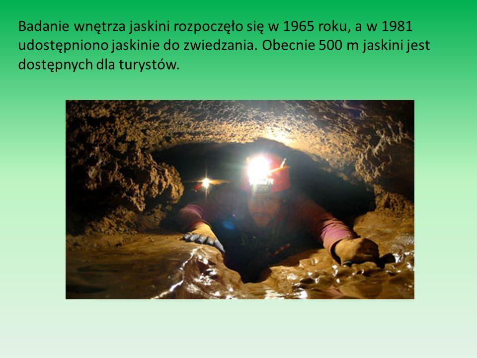 Badanie wnętrza jaskini rozpoczęło się w 1965 roku, a w 1981 udostępniono jaskinie do zwiedzania. Obecnie 500 m jaskini jest dostępnych dla turystów.