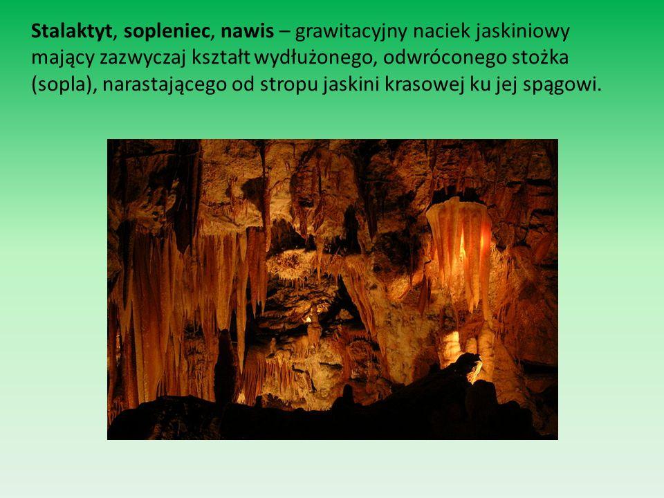 Stalagmit – naciek jaskiniowy, grawitacyjny osiągający duże rozmiary.