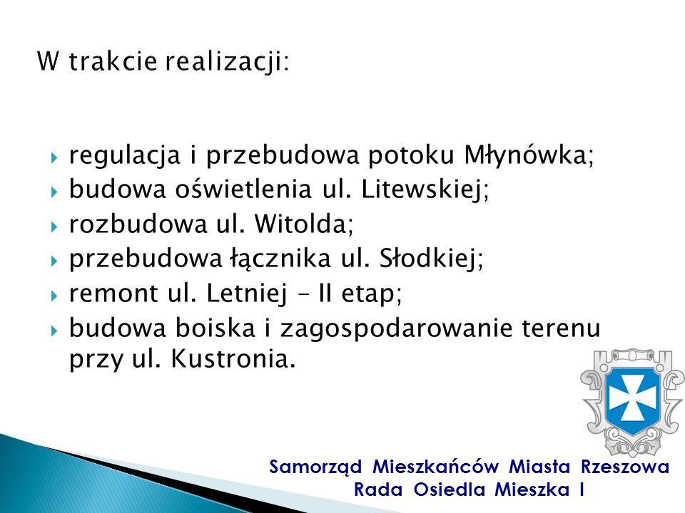 regulacja i przebudowa potoku Młynówka; budowa oświetlenia ul.