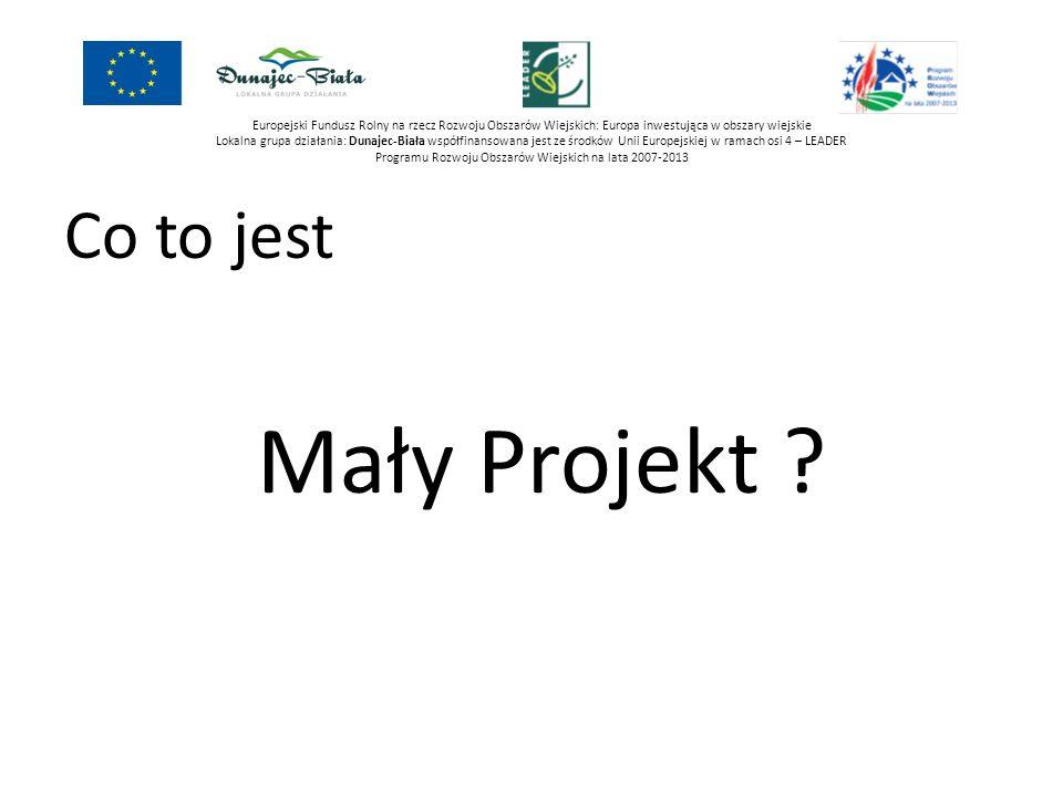 Europejski Fundusz Rolny na rzecz Rozwoju Obszarów Wiejskich: Europa inwestująca w obszary wiejskie Lokalna grupa działania: Dunajec-Biała współfinansowana jest ze środków Unii Europejskiej w ramach osi 4 – LEADER Programu Rozwoju Obszarów Wiejskich na lata 2007-2013 Przez mały projekt rozumiemy projekt którego koszt całkowity nie jest mniejszy niż 4 500 zł oraz nie jest większy niż 100 000 zł