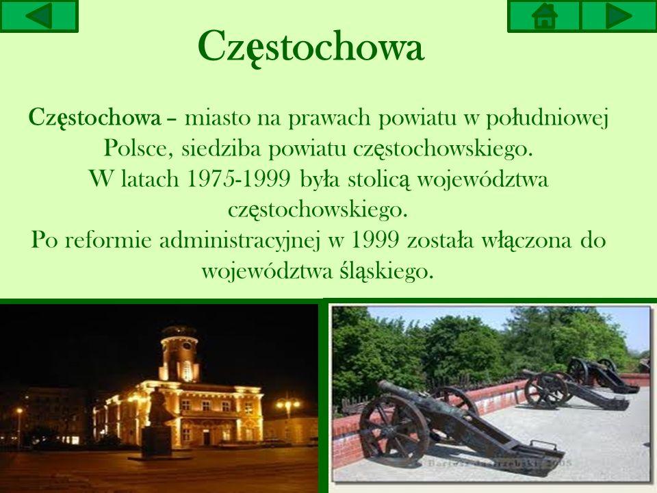 Zabytkowa Aleja Klonów w Z ł otym Potoku zosta ł a posadzona w XIX w.