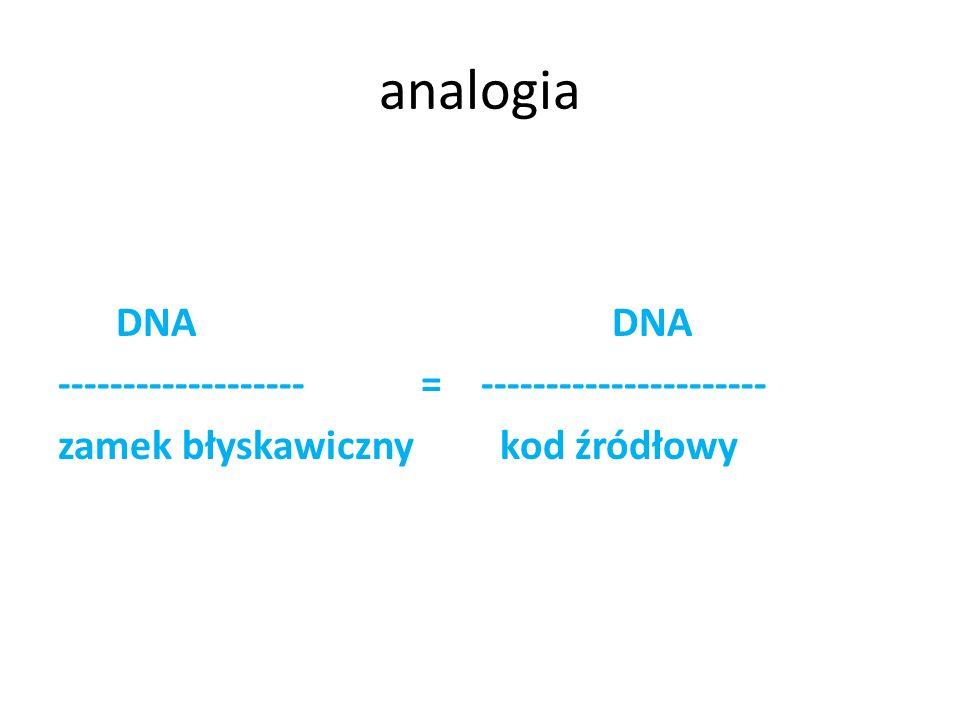 analogia DNA DNA ------------------- = ---------------------- zamek błyskawiczny kod źródłowy