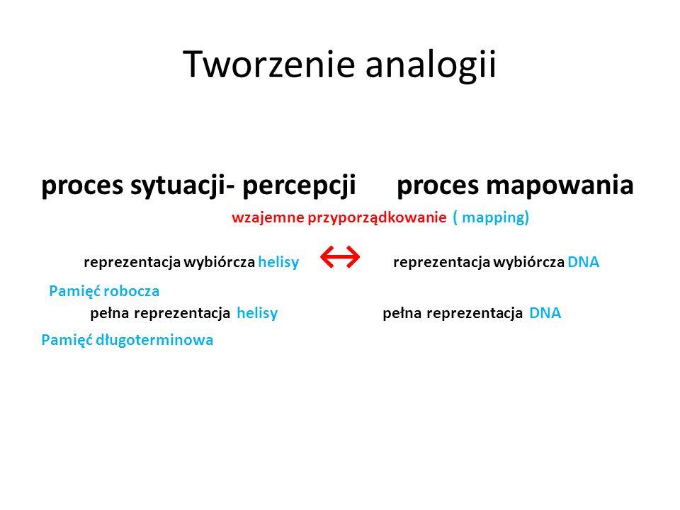 Tworzenie analogii proces sytuacji- percepcji proces mapowania wzajemne przyporządkowanie ( mapping) reprezentacja wybiórcza helisy reprezentacja wybi