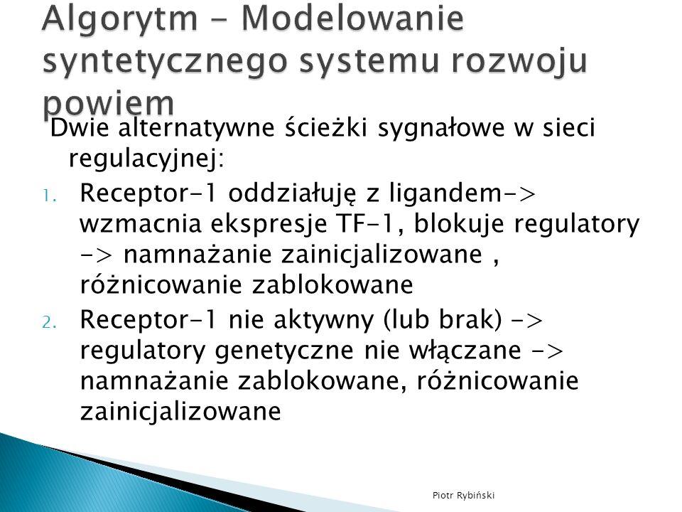 Dwie alternatywne ścieżki sygnałowe w sieci regulacyjnej: 1.