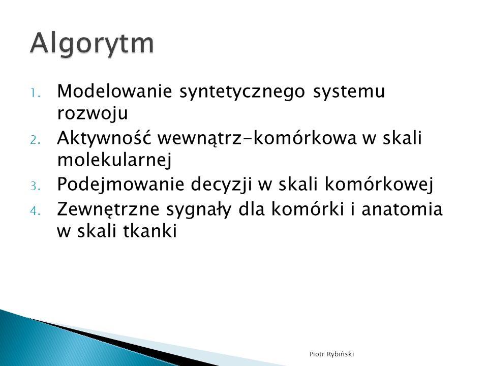 1. Modelowanie syntetycznego systemu rozwoju 2.
