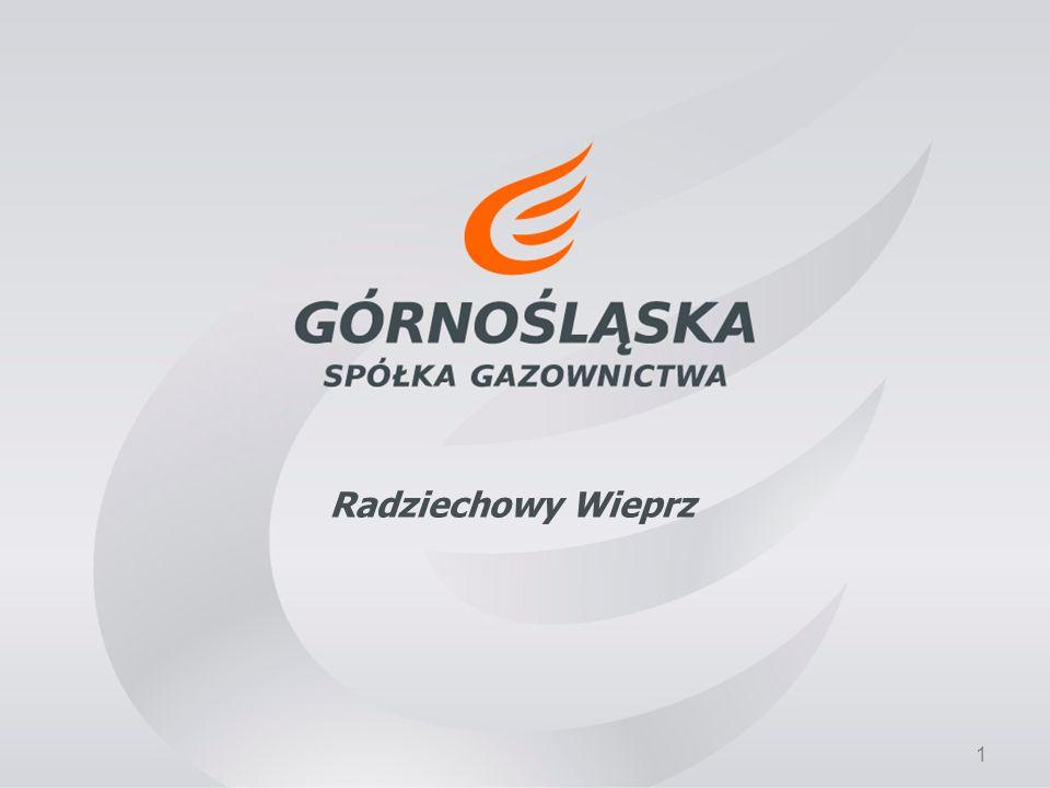 12 Obsługa klientów www.gsgaz.pl http://www.gsgaz.pl/