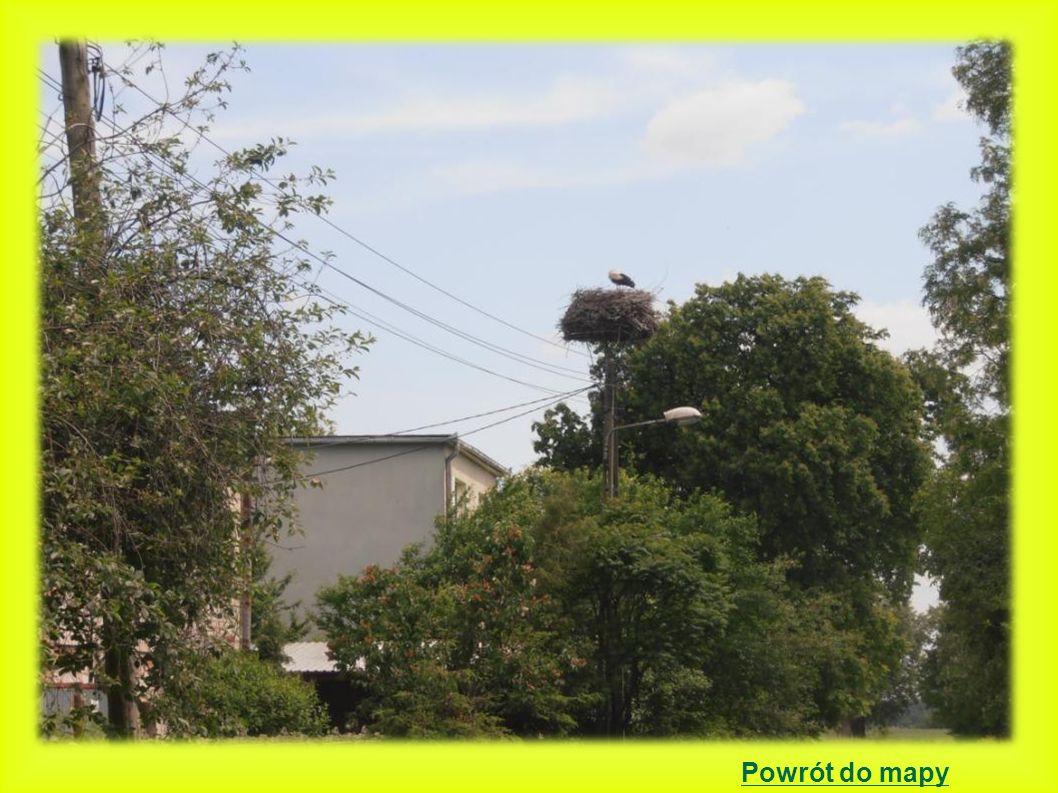 Godziszewo położenie gniazda: słup betonowy energetyczny z platformą 2000 - 3 młode 2001 - 0 młodych,przyleciał tylko jeden bocian i nie doczekał się partnerki.