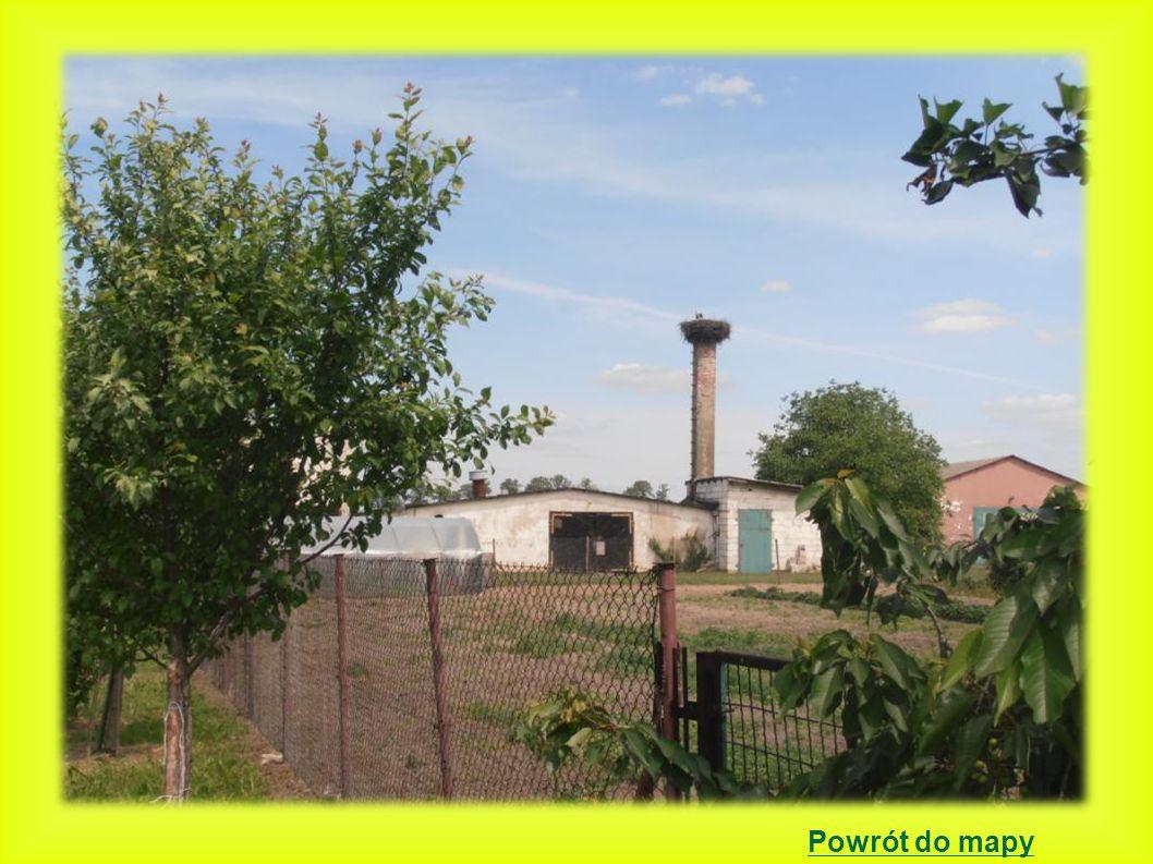 Nieborza położenie gniazda: betonowy słup energetyczny 2000 - 2 młode bociany- gniazdo budowane w 1999r.