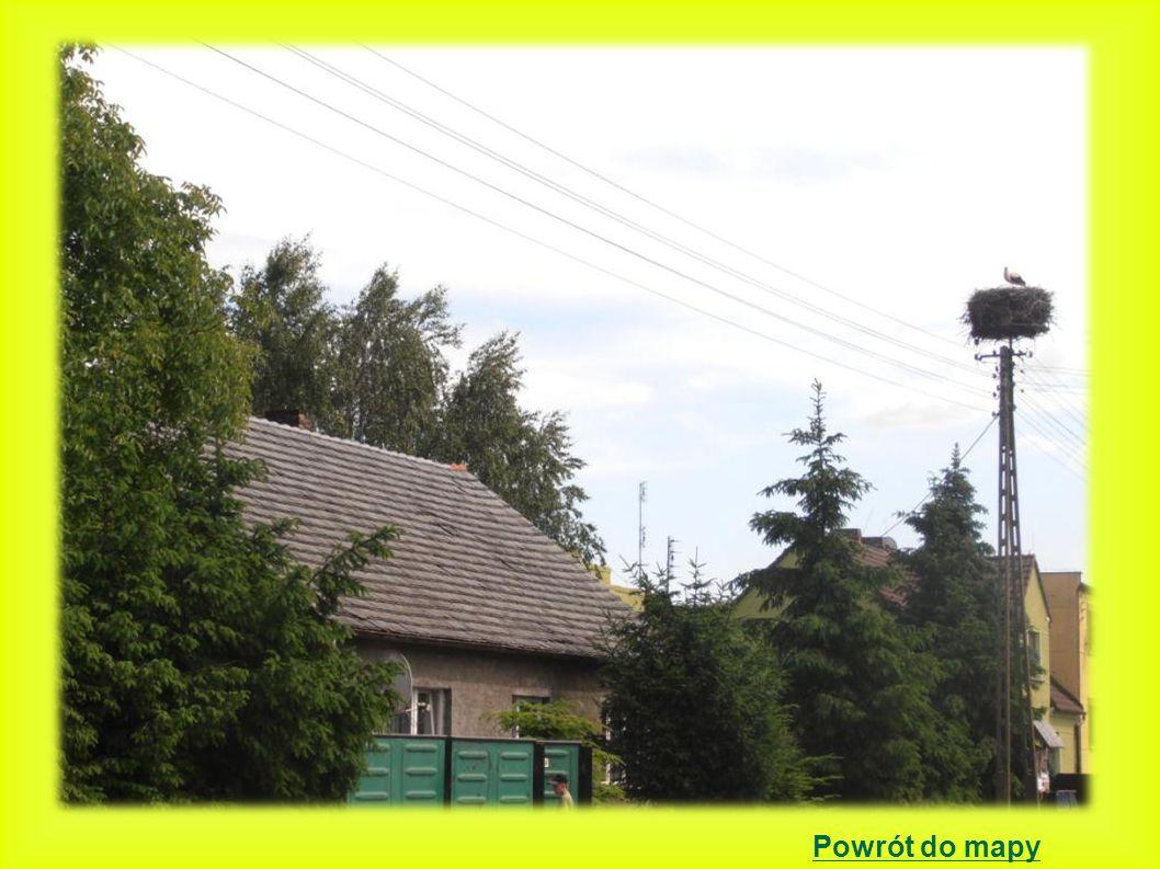 Kopanica położenie gniazda: gniazdo znajduje się na kościele 2000 - 4 młode -6 dużych gniazd na dachu kościoła ewangelickiego.