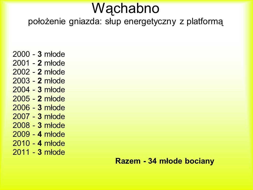 Wąchabno położenie gniazda: słup energetyczny z platformą 2000 - 3 młode 2001 - 2 młode 2002 - 2 młode 2003 - 2 młode 2004 - 3 młode 2005 - 2 młode 2006 - 3 młode 2007 - 3 młode 2008 - 3 młode 2009 - 4 młode 2010 - 4 młode 2011 - 3 młode Razem - 34 młode bociany