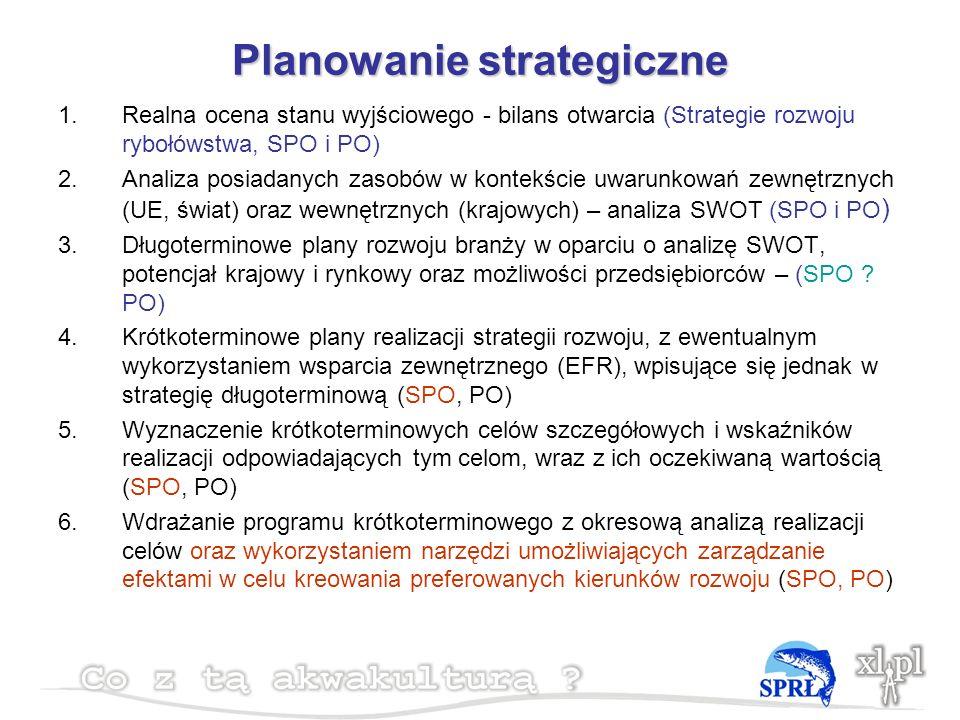 Planowanie strategiczne 1.Realna ocena stanu wyjściowego - bilans otwarcia (Strategie rozwoju rybołówstwa, SPO i PO) 2.Analiza posiadanych zasobów w kontekście uwarunkowań zewnętrznych (UE, świat) oraz wewnętrznych (krajowych) – analiza SWOT (SPO i PO ) 3.Długoterminowe plany rozwoju branży w oparciu o analizę SWOT, potencjał krajowy i rynkowy oraz możliwości przedsiębiorców – (SPO .