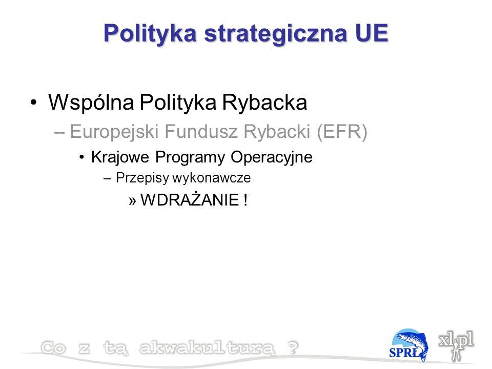 Polityka strategiczna UE Wspólna Polityka Rybacka –Europejski Fundusz Rybacki (EFR) Krajowe Programy Operacyjne –Przepisy wykonawcze »WDRAŻANIE !