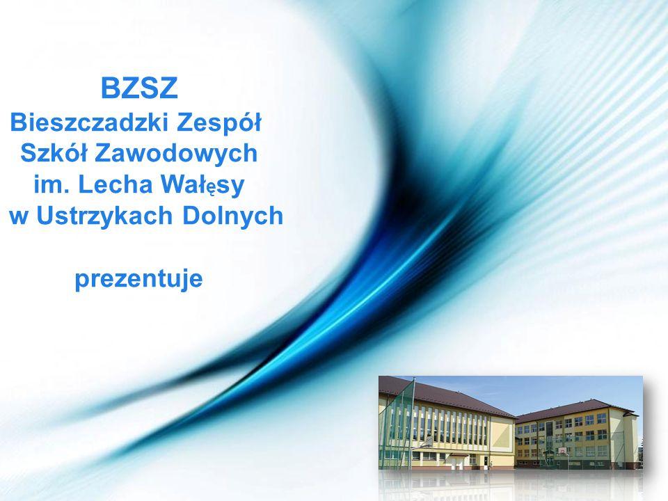Page 1 BZSZ Bieszczadzki Zespół Szkół Zawodowych im. Lecha Wał ę sy w Ustrzykach Dolnych prezentuje