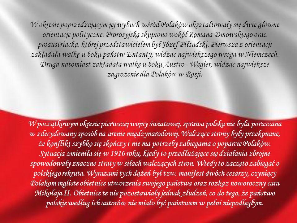 W okresie poprzedzającym jej wybuch wśród Polaków ukształtowały się dwie główne orientacje polityczne. Prorosyjska skupiono wokół Romana Dmowskiego or