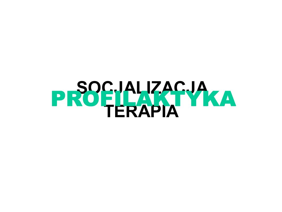 TERAPIA SOCJALIZACJA PROFILAKTYKA