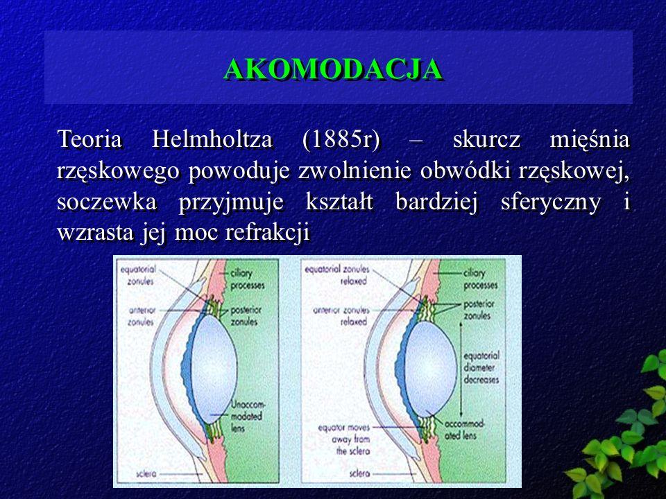 Teoria Helmholtza (1885r) – skurcz mięśnia rzęskowego powoduje zwolnienie obwódki rzęskowej, soczewka przyjmuje kształt bardziej sferyczny i wzrasta j