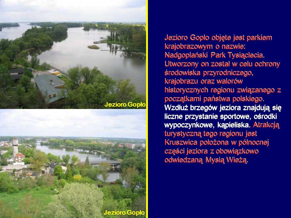 Jezioro Gopło objęte jest parkiem krajobrazowym o nazwie: Nadgoplański Park Tysiąclecia.