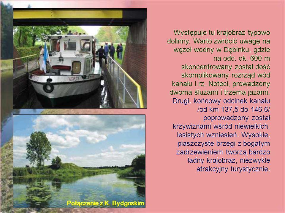 Występuje tu krajobraz typowo dolinny.Warto zwrócić uwagę na węzeł wodny w Dębinku, gdzie na odc.