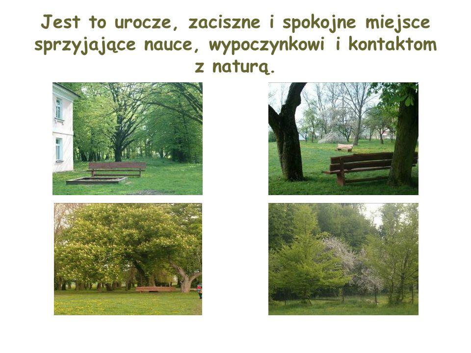 Jest to urocze, zaciszne i spokojne miejsce sprzyjające nauce, wypoczynkowi i kontaktom z naturą.