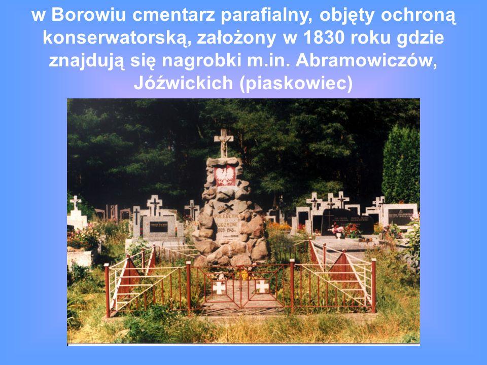 w Borowiu cmentarz parafialny, objęty ochroną konserwatorską, założony w 1830 roku gdzie znajdują się nagrobki m.in.