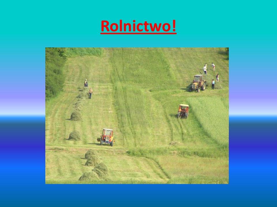 Rolnictwo ekstensywne Rozwój rolnictwa sprawił, że powstały dwa jego odłamy jednym z nich jest rolnictwo ekstensywne, które sprawiło, że człowiek ma inne podejście do rolnictwa i są inaczej prowadzone hodowle jakichkolwiek roślin w porównaniu do rolnictwa intensywnego.