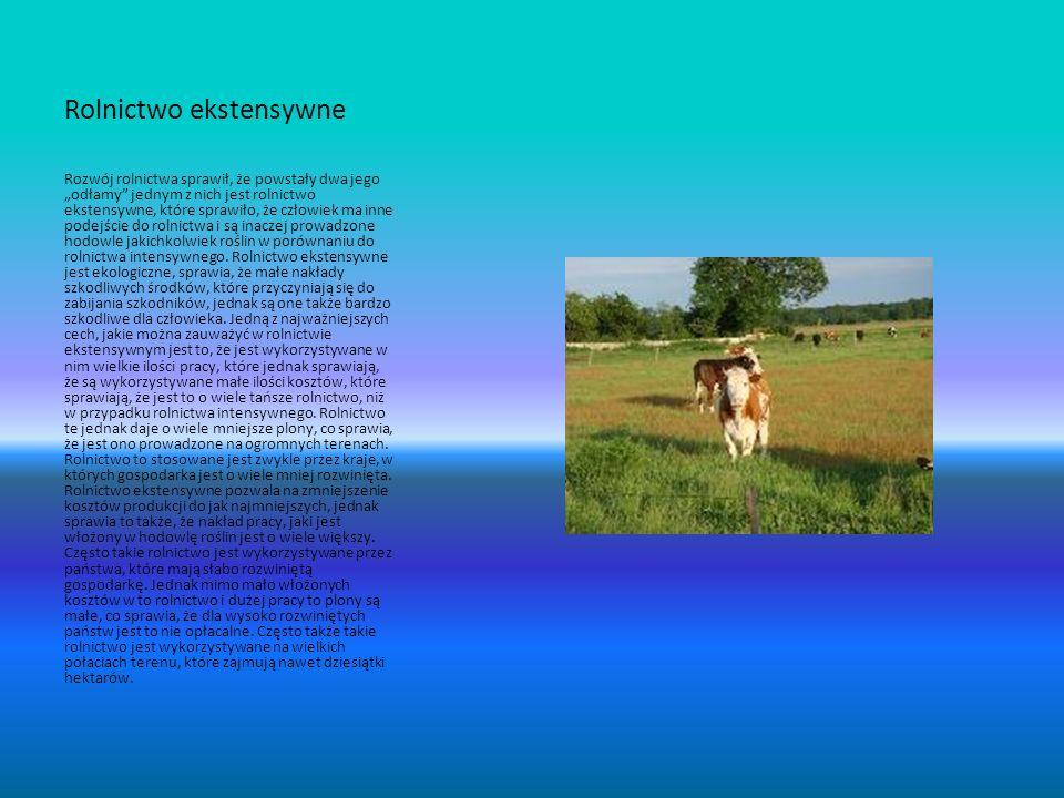 Rolnictwo ekstensywne Rozwój rolnictwa sprawił, że powstały dwa jego odłamy jednym z nich jest rolnictwo ekstensywne, które sprawiło, że człowiek ma i