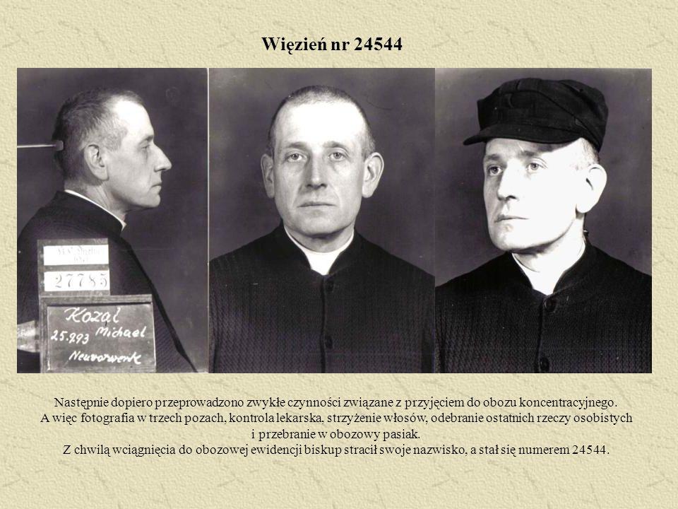 Więzień nr 24544 Następnie dopiero przeprowadzono zwykłe czynności związane z przyjęciem do obozu koncentracyjnego. A więc fotografia w trzech pozach,