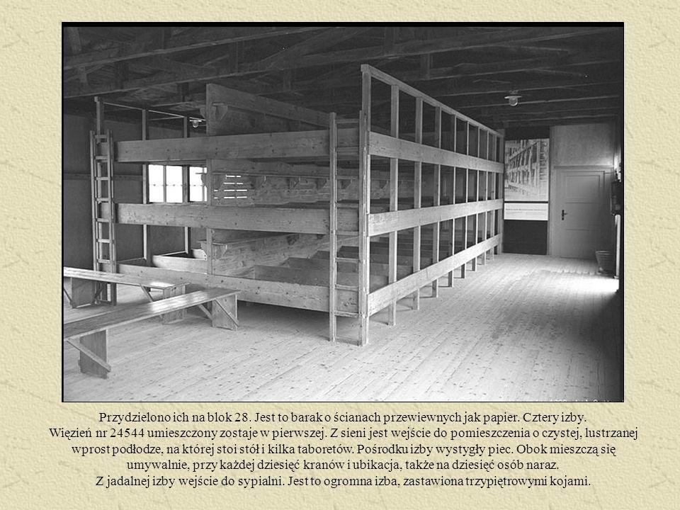 Przydzielono ich na blok 28. Jest to barak o ścianach przewiewnych jak papier. Cztery izby. Więzień nr 24544 umieszczony zostaje w pierwszej. Z sieni