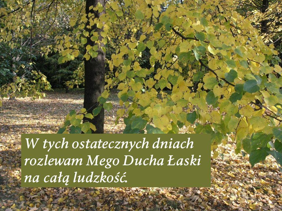 W tych ostatecznych dniach rozlewam Mego Ducha Łaski na całą ludzkość.