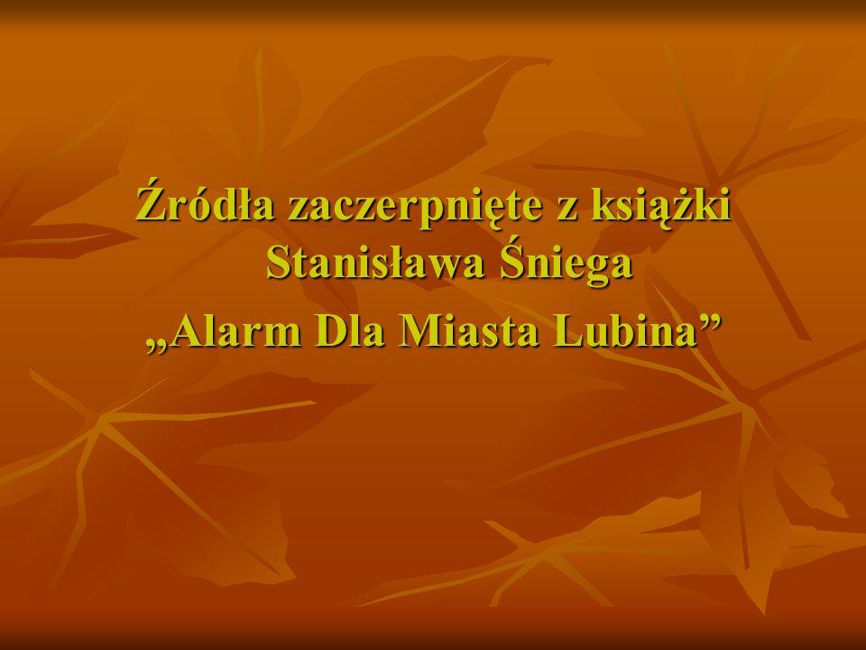 Szczególne podziękowania dla Pana Krzysztofa Raczkowiaka, który wykonał podczas Wydarzeń Lubińskich użyte do prezentacji zdjęcia. Fotografie pobrano z