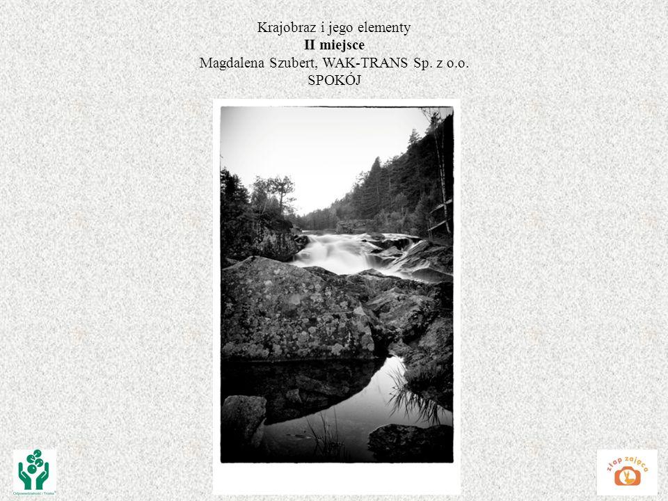 Krajobraz i jego elementy II miejsce Magdalena Szubert, WAK-TRANS Sp. z o.o. SPOKÓJ