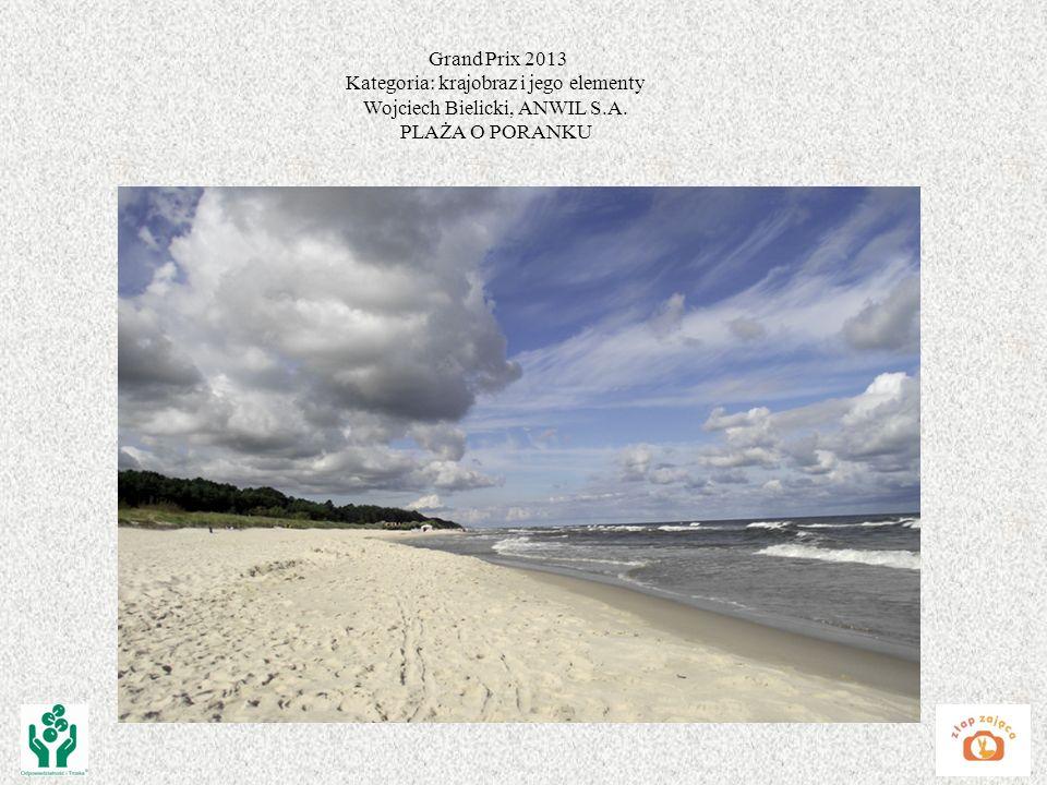 Grand Prix 2013 Kategoria: krajobraz i jego elementy Wojciech Bielicki, ANWIL S.A. PLAŻA O PORANKU