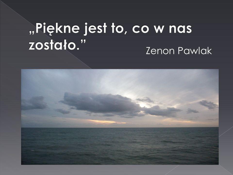 Zenon Pawlak