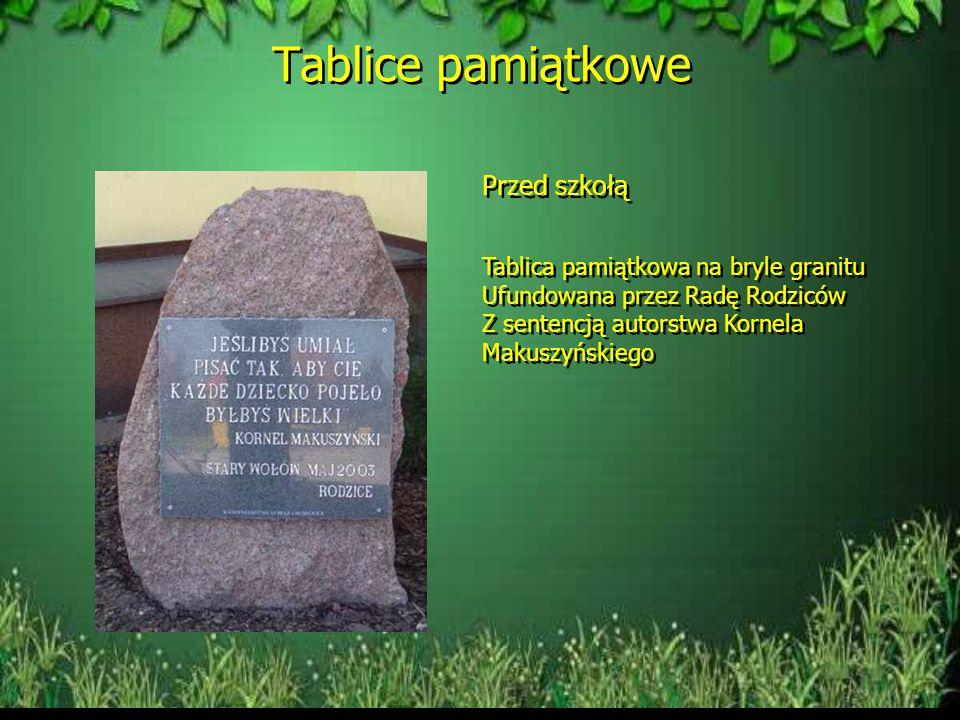 29 maja 2003 roku nadano szkole imię Kornela Makuszyńskiego. Szkoła ma swój hymn i sztandar Hymn szkoły Uśmiechnij się i bądź słoneczny, i innych nauc