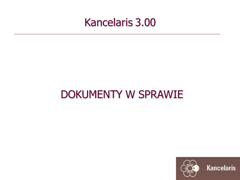 Kancelaris 3.00 DOKUMENTY W SPRAWIE