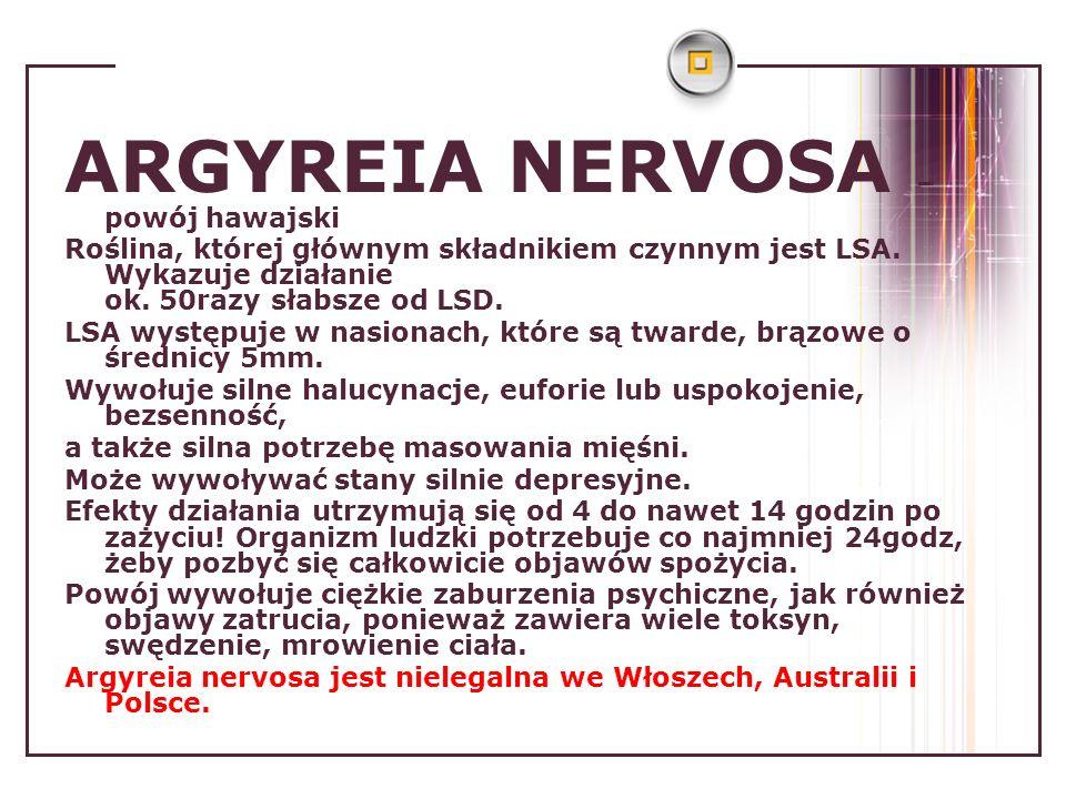 ARGYREIA NERVOSA – powój hawajski Roślina, której głównym składnikiem czynnym jest LSA. Wykazuje działanie ok. 50razy słabsze od LSD. LSA występuje w