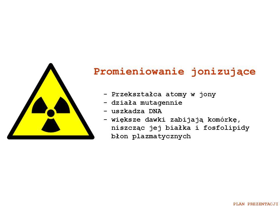 Promieniowanie jonizujące - Przekształca atomy w jony - działa mutagennie - uszkadza DNA - większe dawki zabijają komórkę, niszcząc jej białka i fosfo