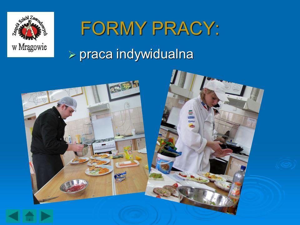 FORMY PRACY: praca indywidualna praca indywidualna